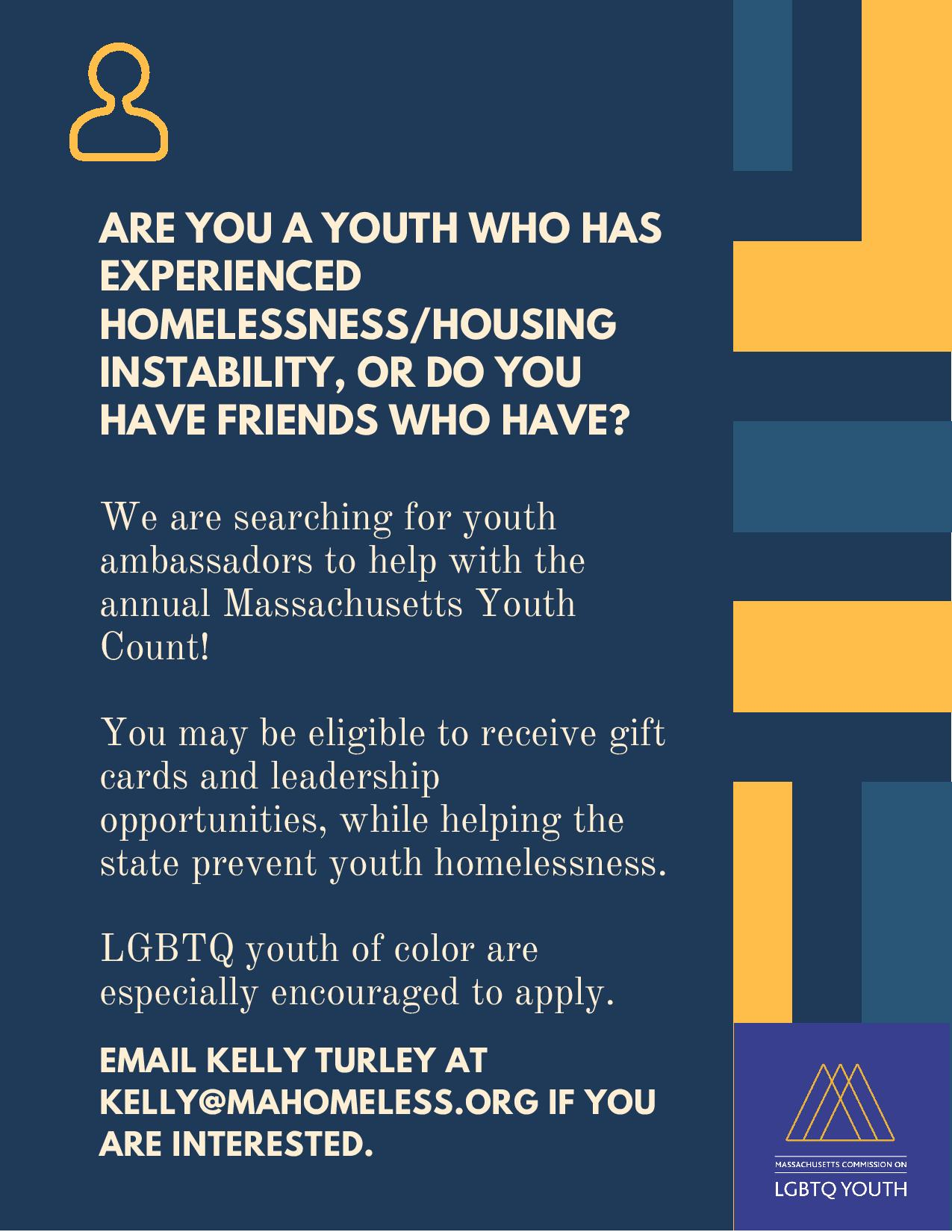 Youth Count outreach initiative flyer