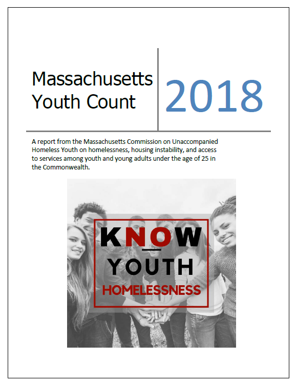 youth count 2018 report cover january 2019